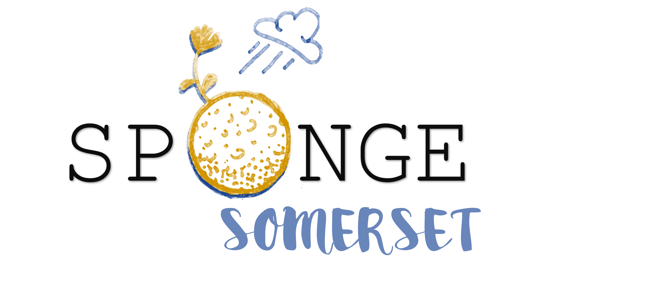 Sponge - Somerset