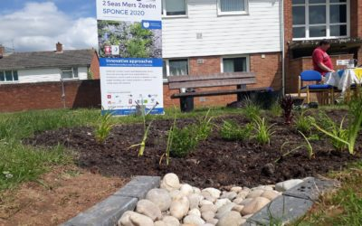 Community planting day at Middleway